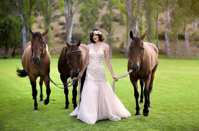 horses (Custom)