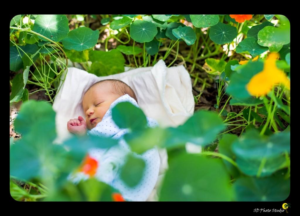 baby-jackson3 (Large)